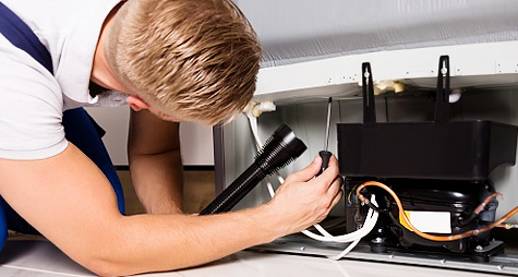 Bosch and LG Refrigerator Repair in New York